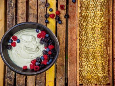 Telový jogurt